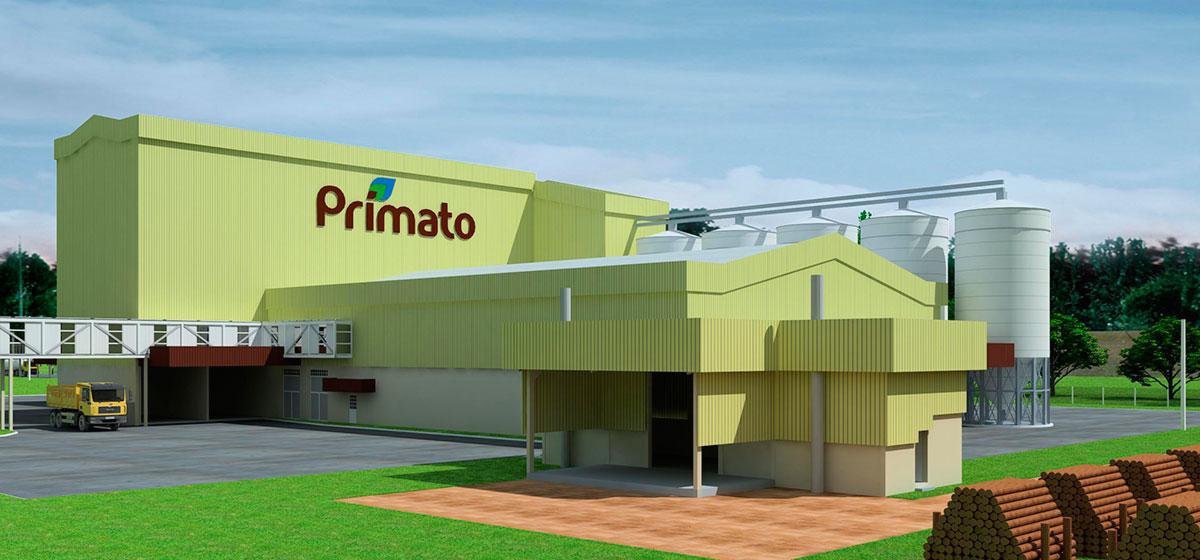 PRIMATO-006web